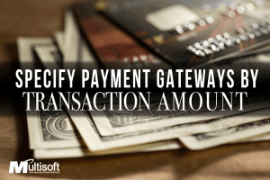 PaymentGatewaybyTrans